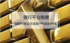 什么是期货_强行平仓 什么情况下期货公司会强平_中信建投期货上海
