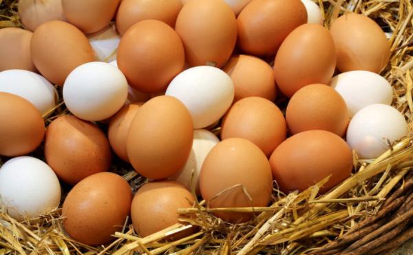鸡蛋期货多少钱一手