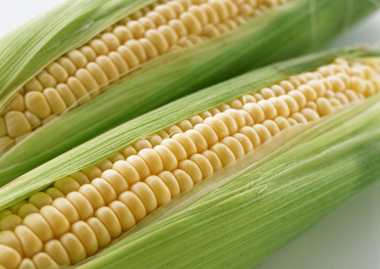 玉米期货的交易时间是几点 玉米期货有夜盘吗