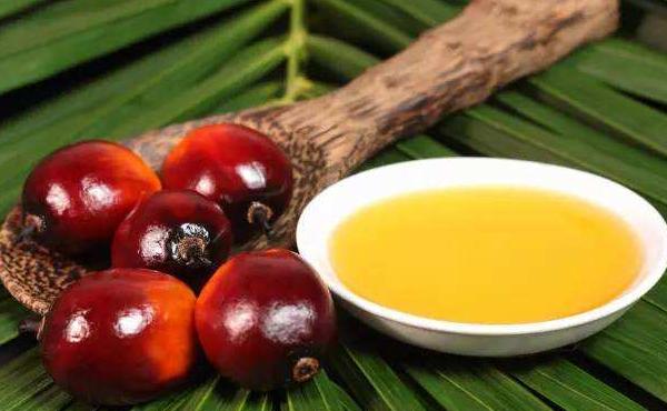 影响棕榈油期货价格的因素有哪些